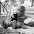 feeding The Kitten | Cute Cat Pictures